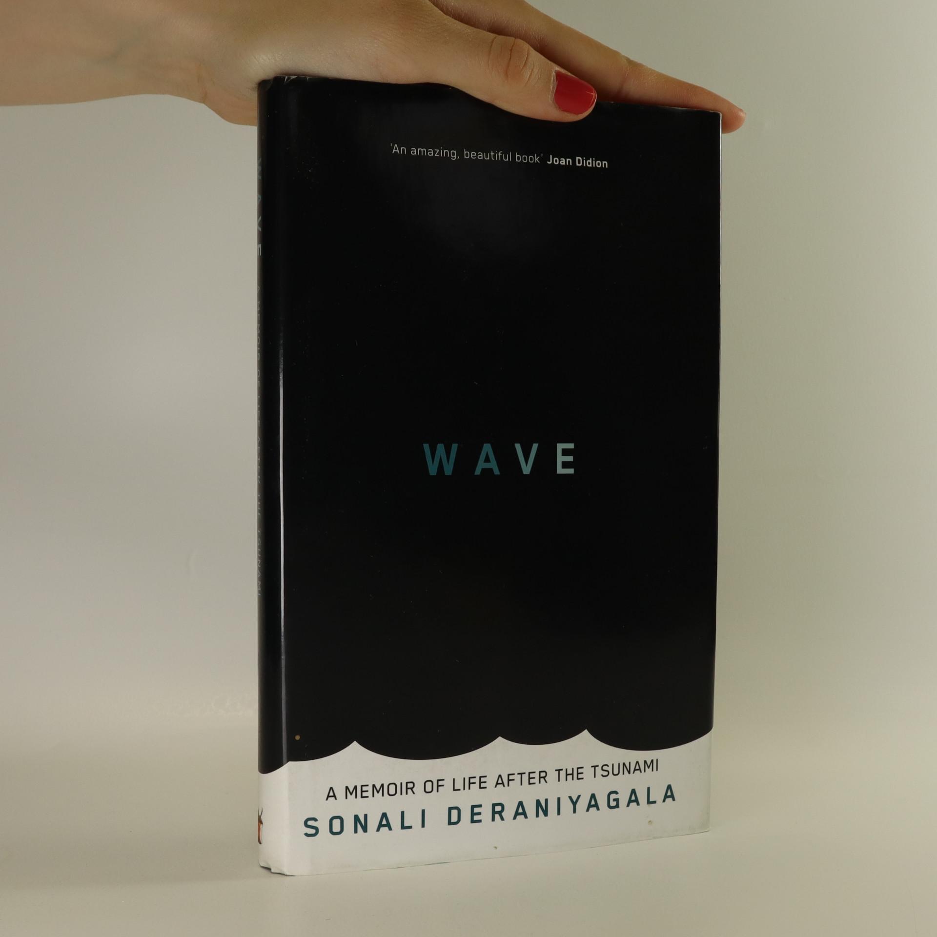 antikvární kniha Wave, 2013