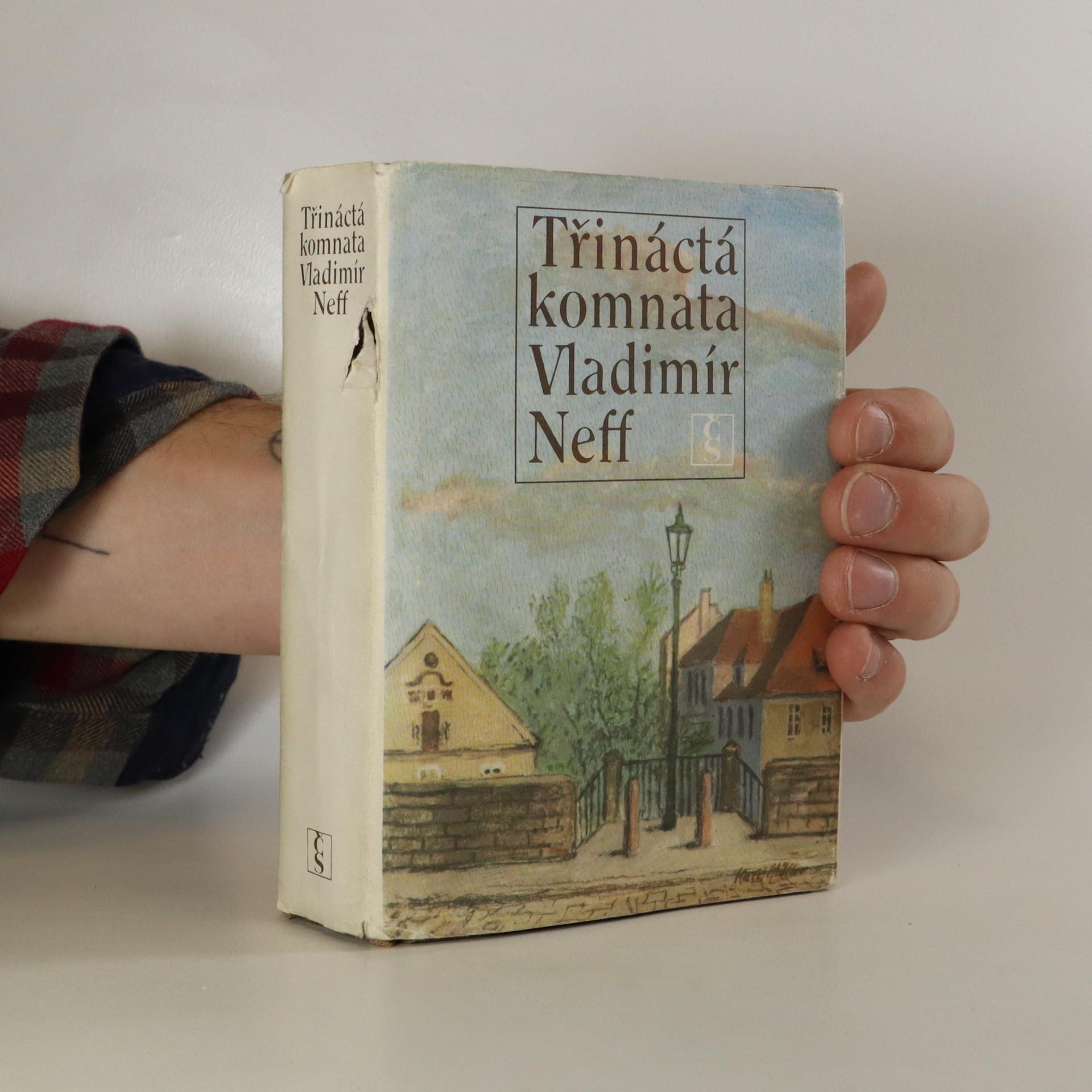 antikvární kniha Třináctá komnata, 1985