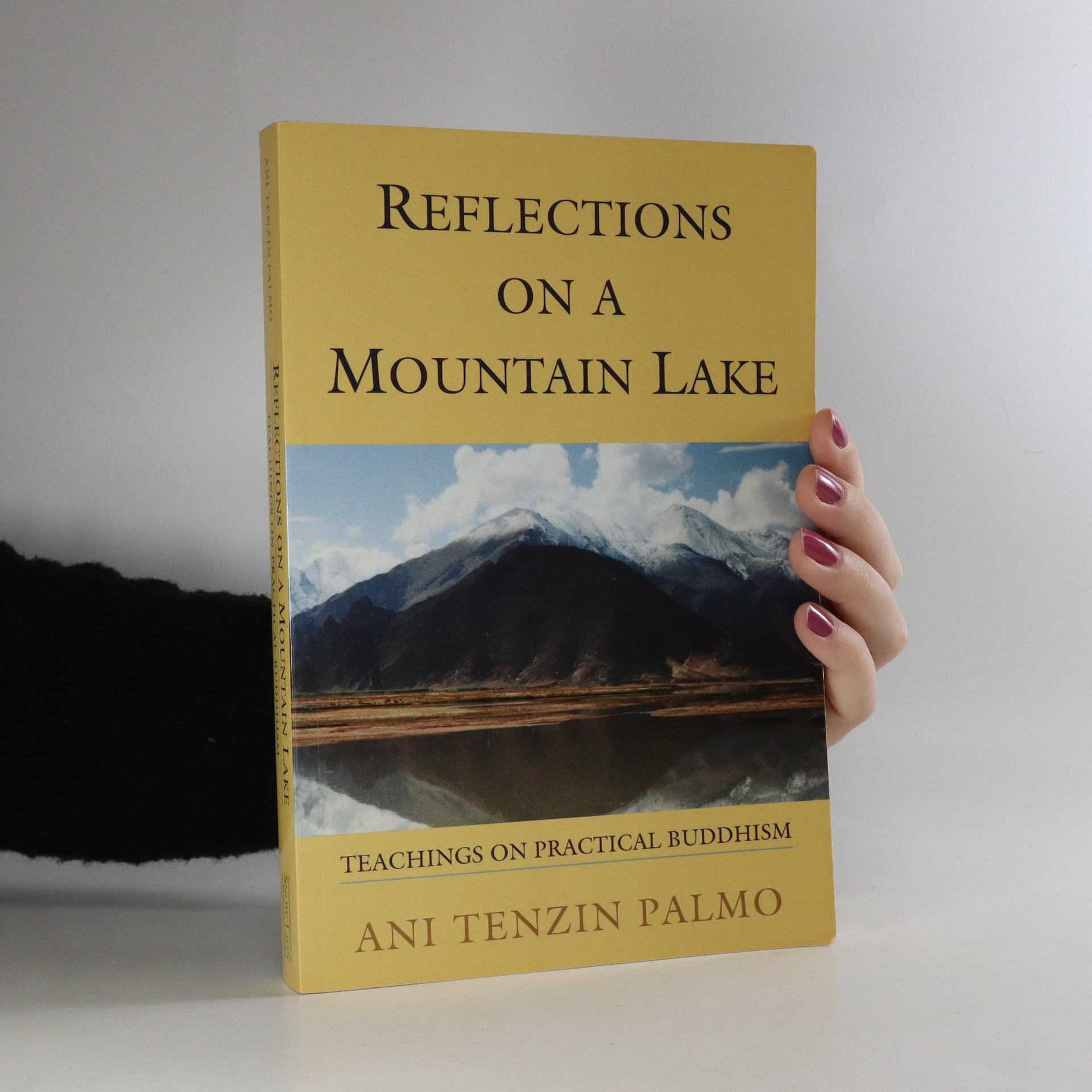 antikvární kniha Reflections on a mountain lake. Teachings on practical Buddhism, 2002