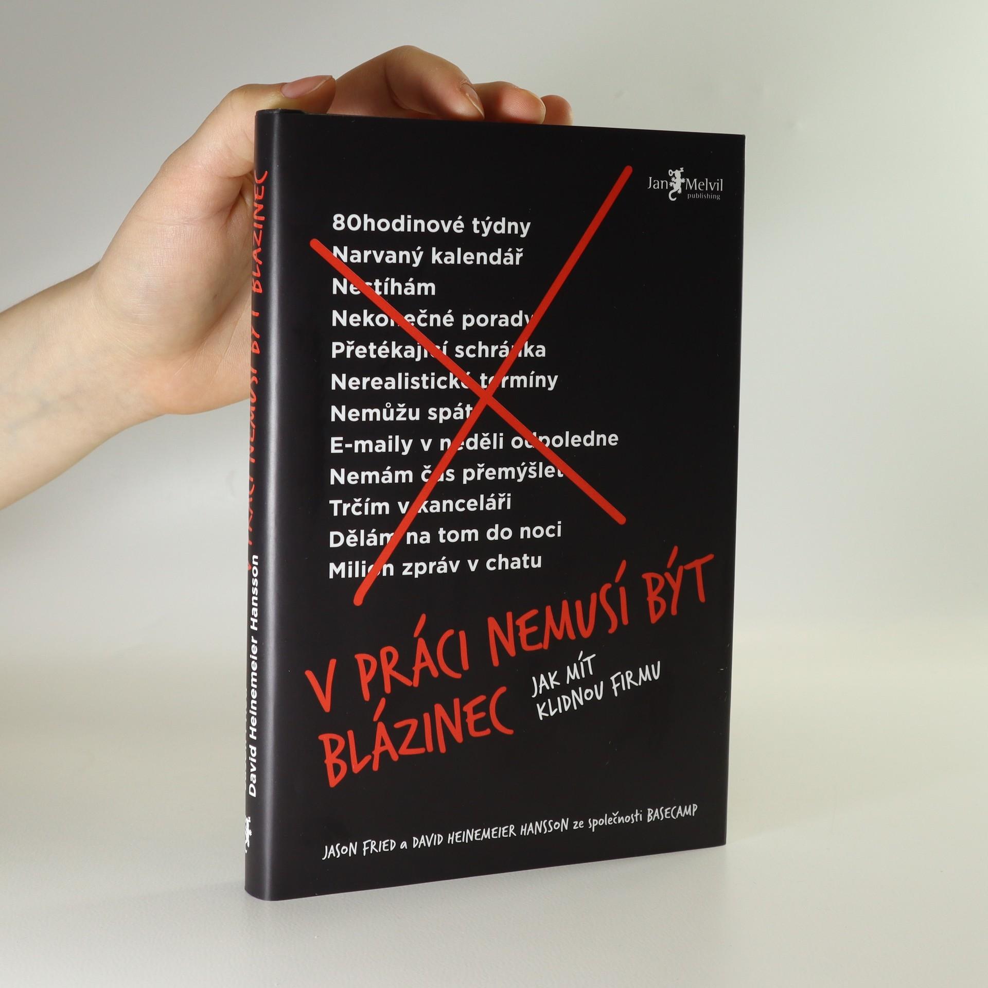 antikvární kniha V práci nemusí být blázinec, 2019