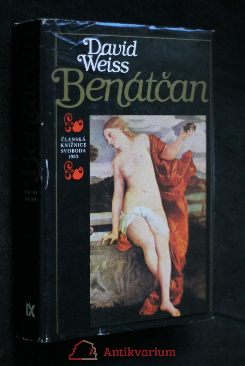 Benátčan : [román o Tizianovi]