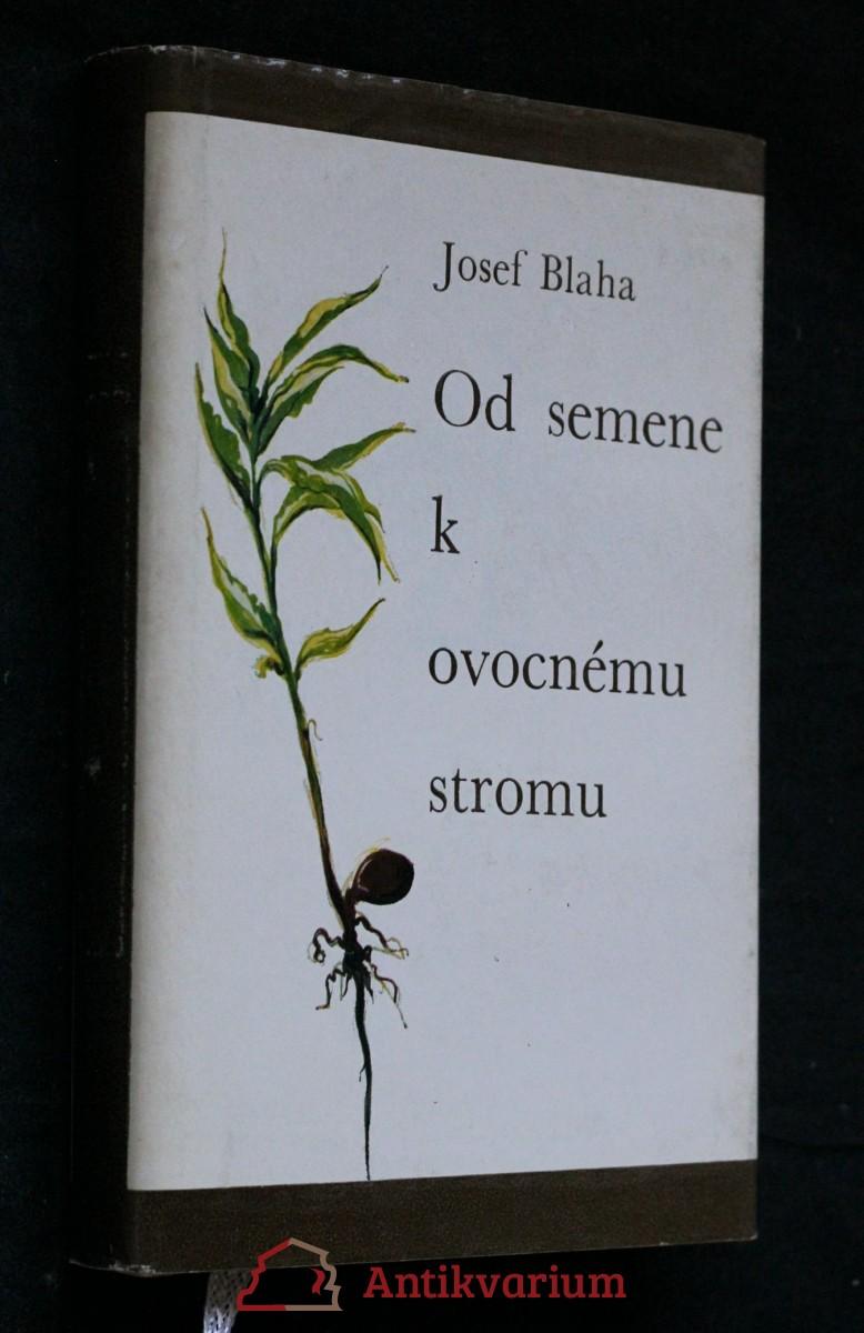 Od semene k ovocnému stromu