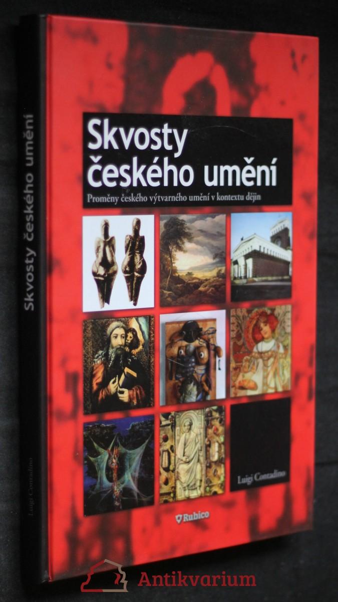 Skvosty českého umění : proměny českého výtvarného umění v kontextu dějin