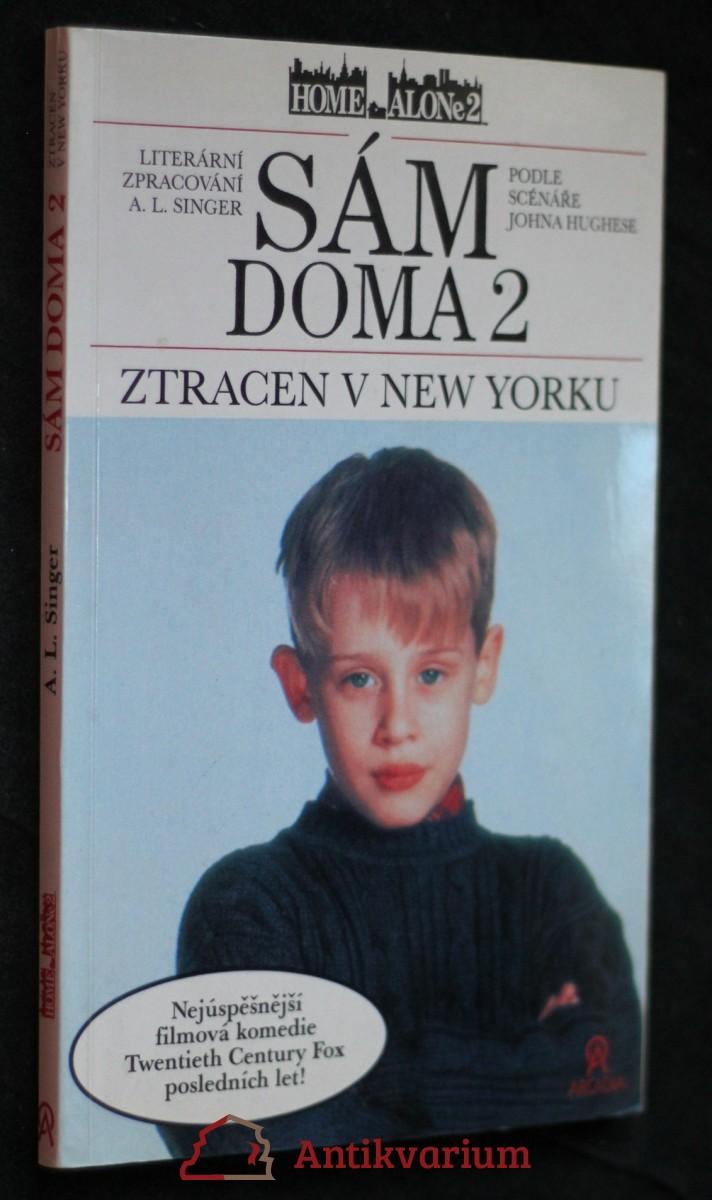 Sám doma 2 : ztracen v New Yorku