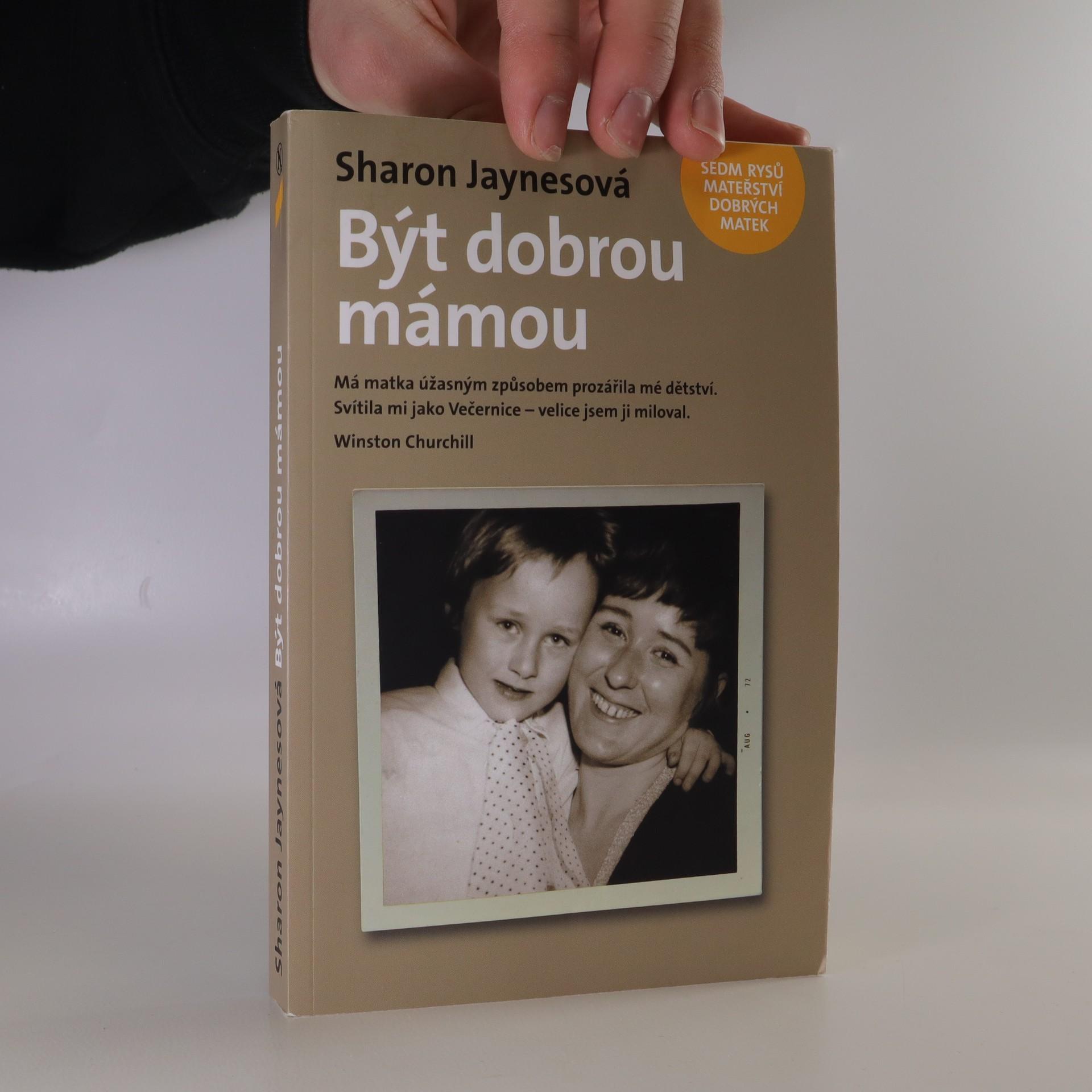 antikvární kniha Být dobrou mámou. Sedm rysů mateřství dobrých matek, 2010
