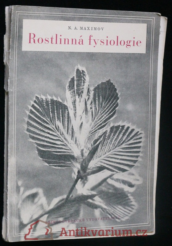 antikvární kniha Rostlinná fysiologie : fysiologie růstu a vývoje, 1951