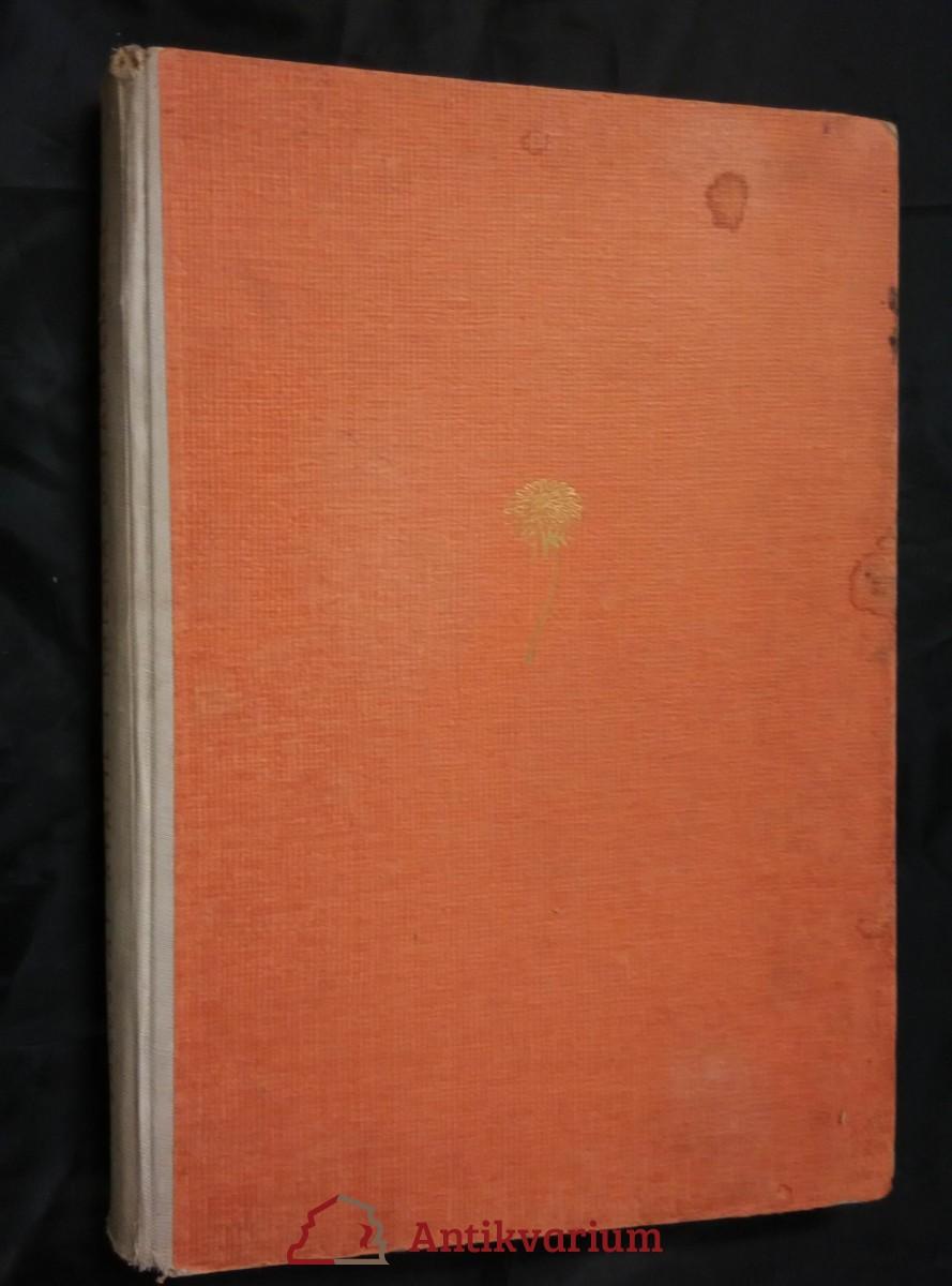 Knížka o Pampelišce (A4, Oppl, 96 s., il. J. Jareš)