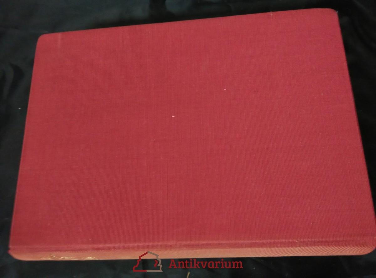Nachový plamen (Ocpl, 390 s., bez přebalu)