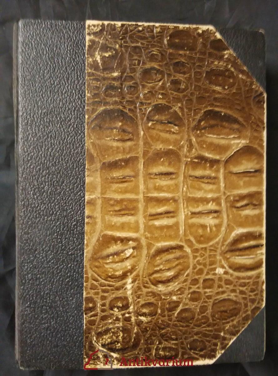 Řezník verdunský (Ppl, 490 s.)