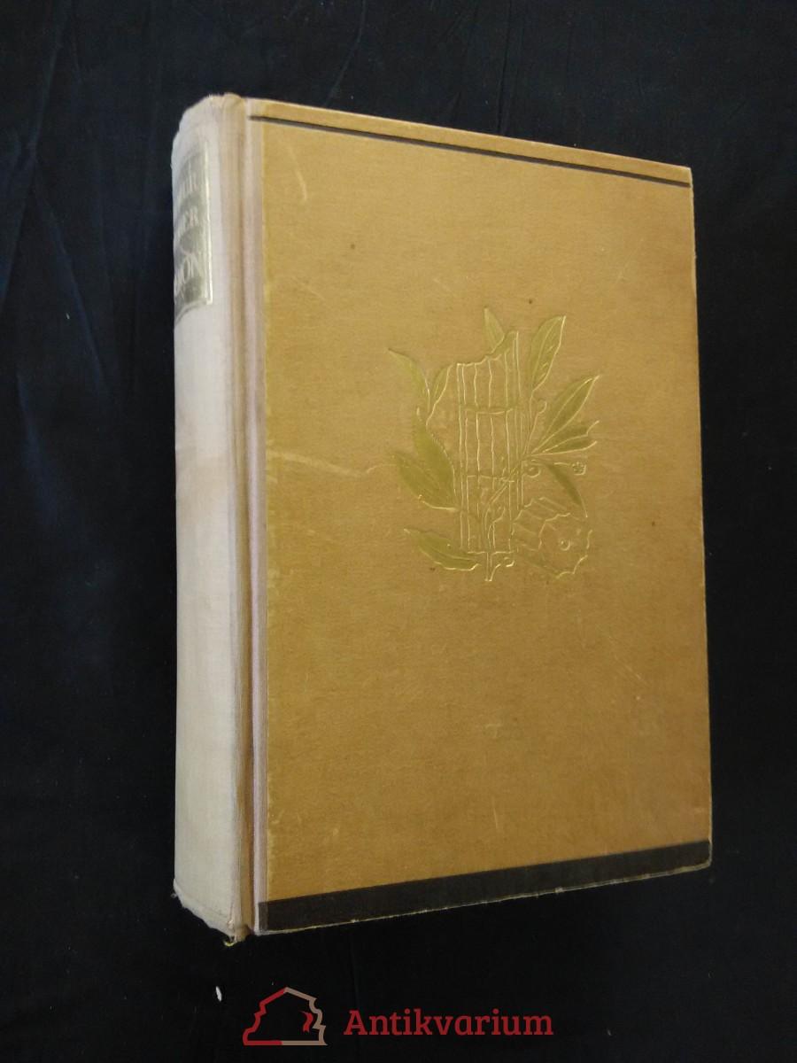 Démon - Bouřlivý život básníka M. Lermontova (Ocpl, 497 s.)