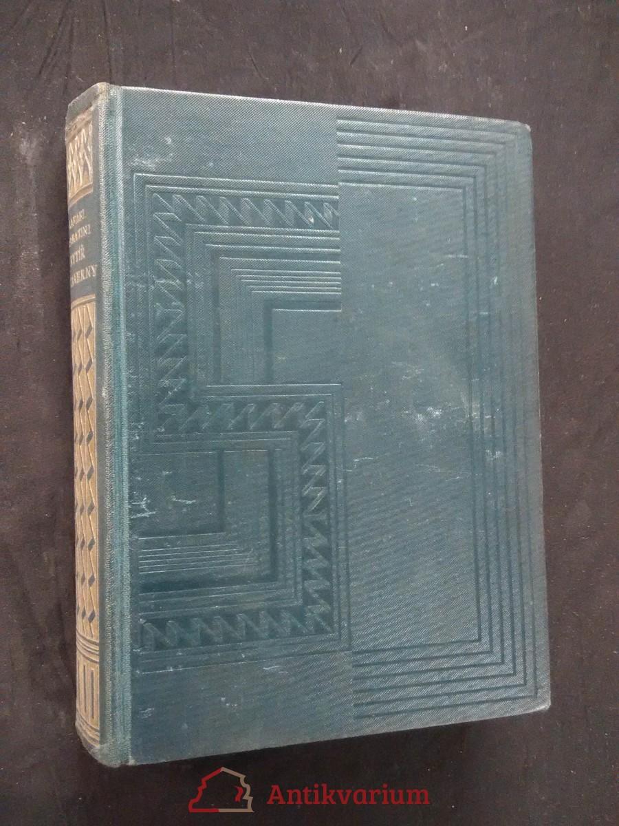Rytíř z taverny (Ocpl, 320 s.)