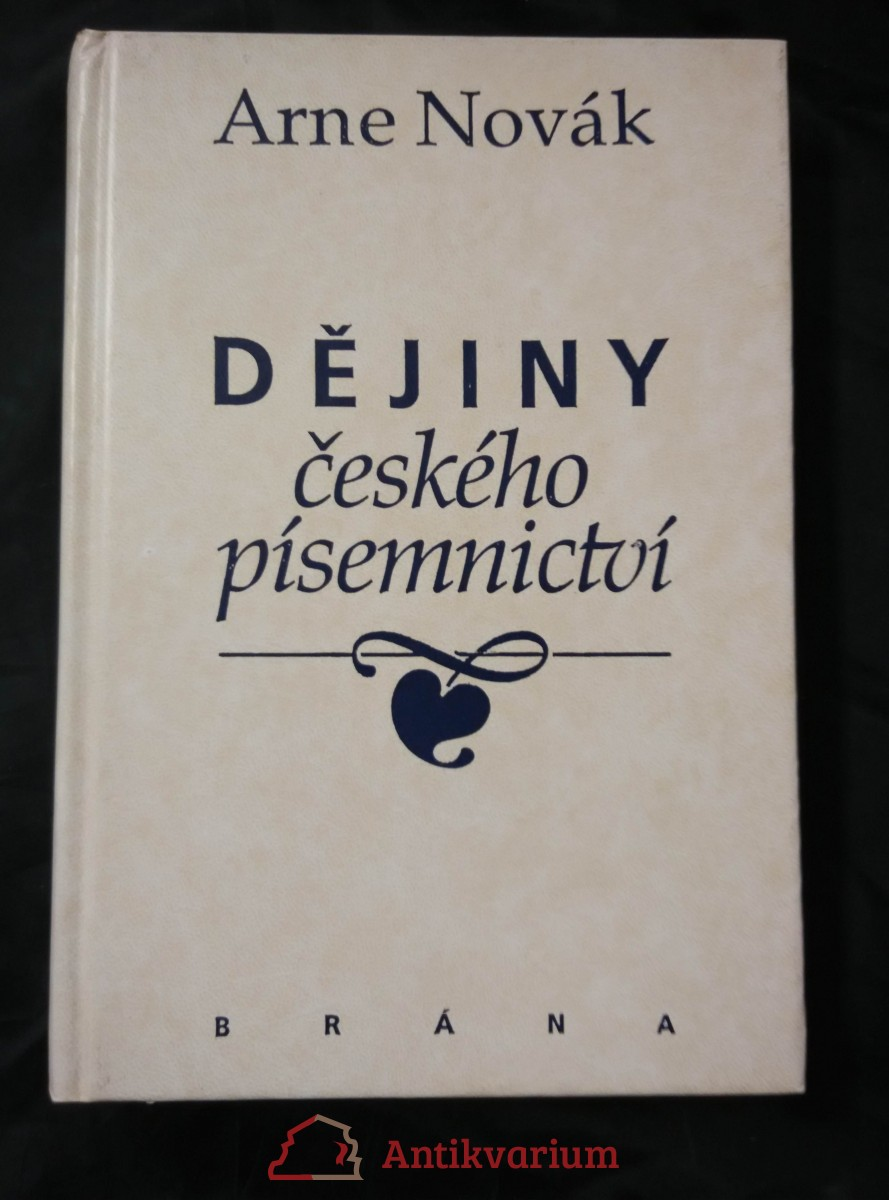 Dějiny českého písemnictví (Pv., 317 s.)