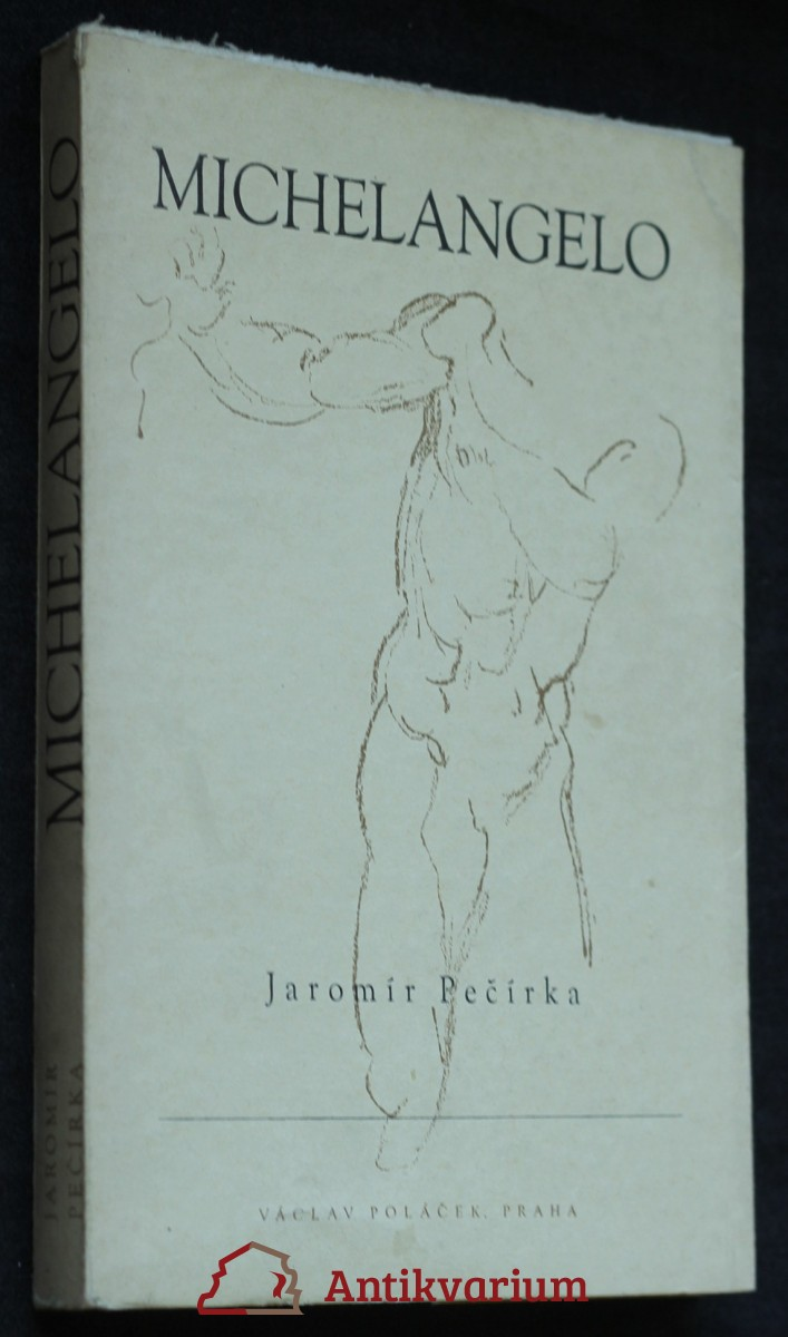 Michelangelo Buonarroti : život a dílo