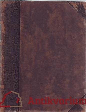 antikvární kniha Společnost a samota, 1907