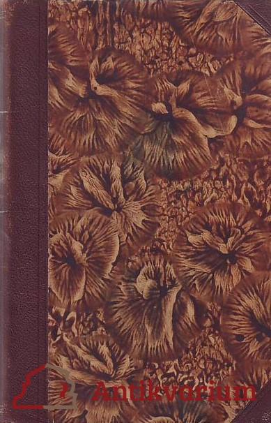 antikvární kniha Americká filosofie, 1929