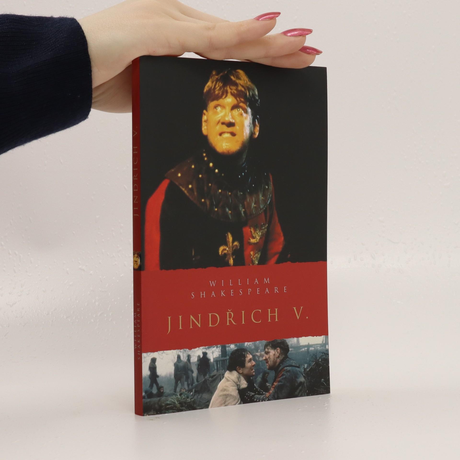 antikvární kniha Jindřich V., 2009