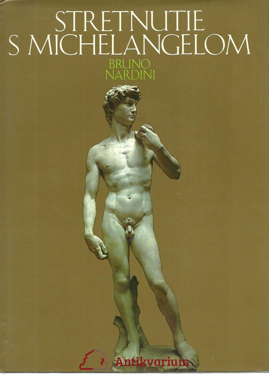 Stretnutie s Michelangelom