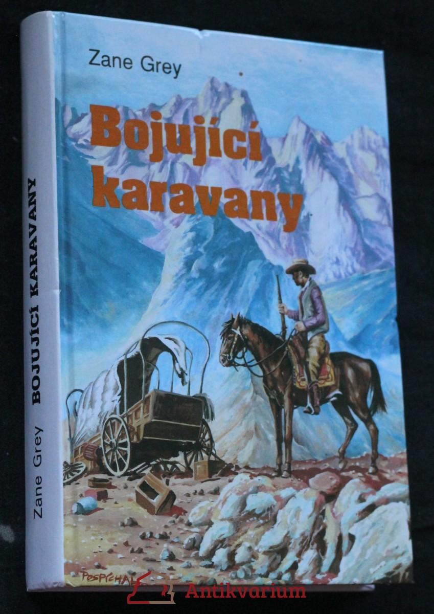 Bojující karavany