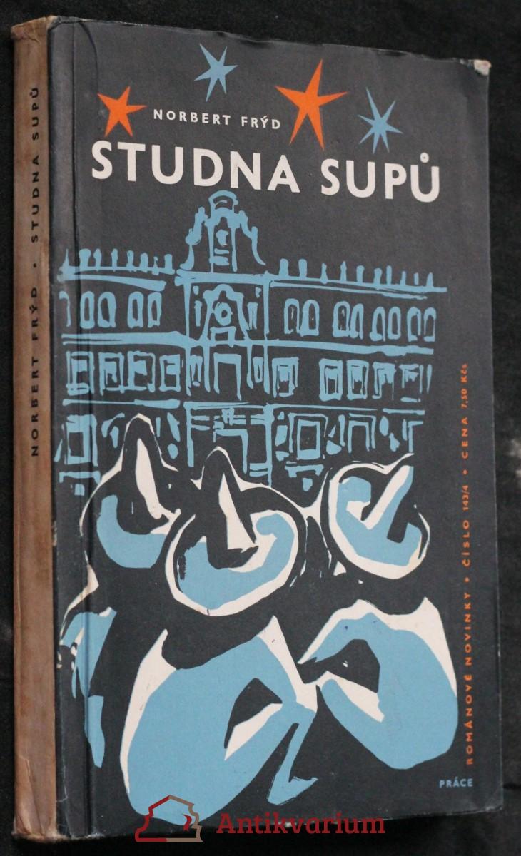 Studna supů : román