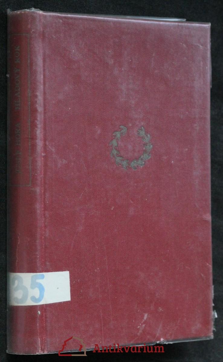 antikvární kniha Hladový rok : Příběh města, 1949