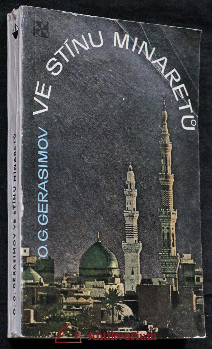 Ve stínu minaretů