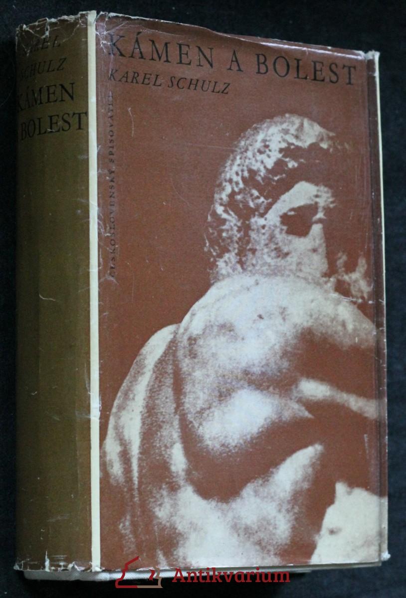 Kámen a bolest Kámen a bolest : Michelangelo Buonarroti