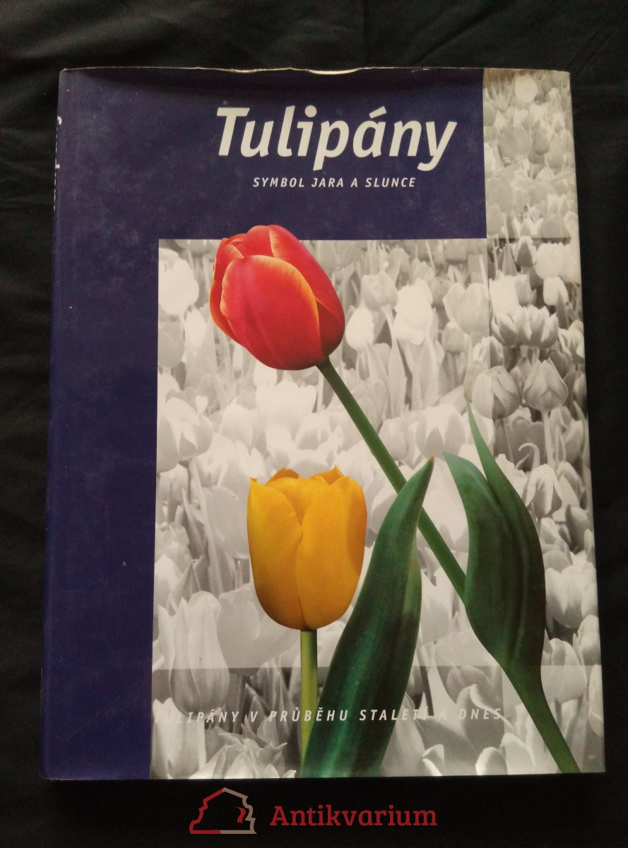 Tulipány - Symbol jara a slunce (A4, lam., 144 s.)