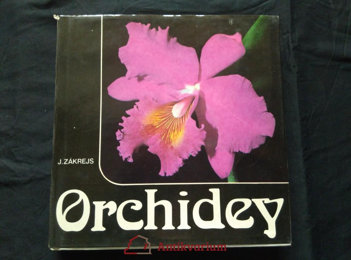 Orchidey (Ocpl, 196 s., bar. fota, il.)