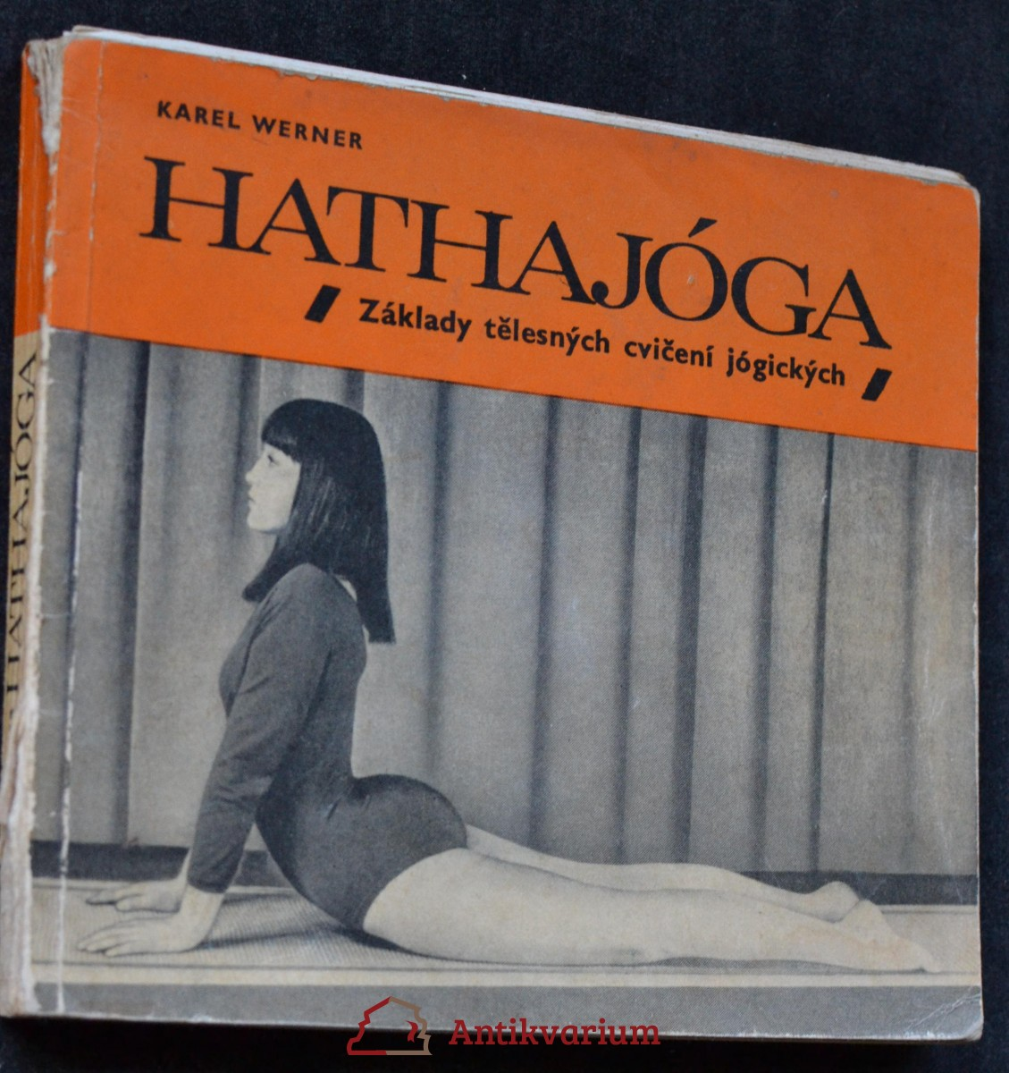 Hathajóga : základy tělesných cvičení jógických