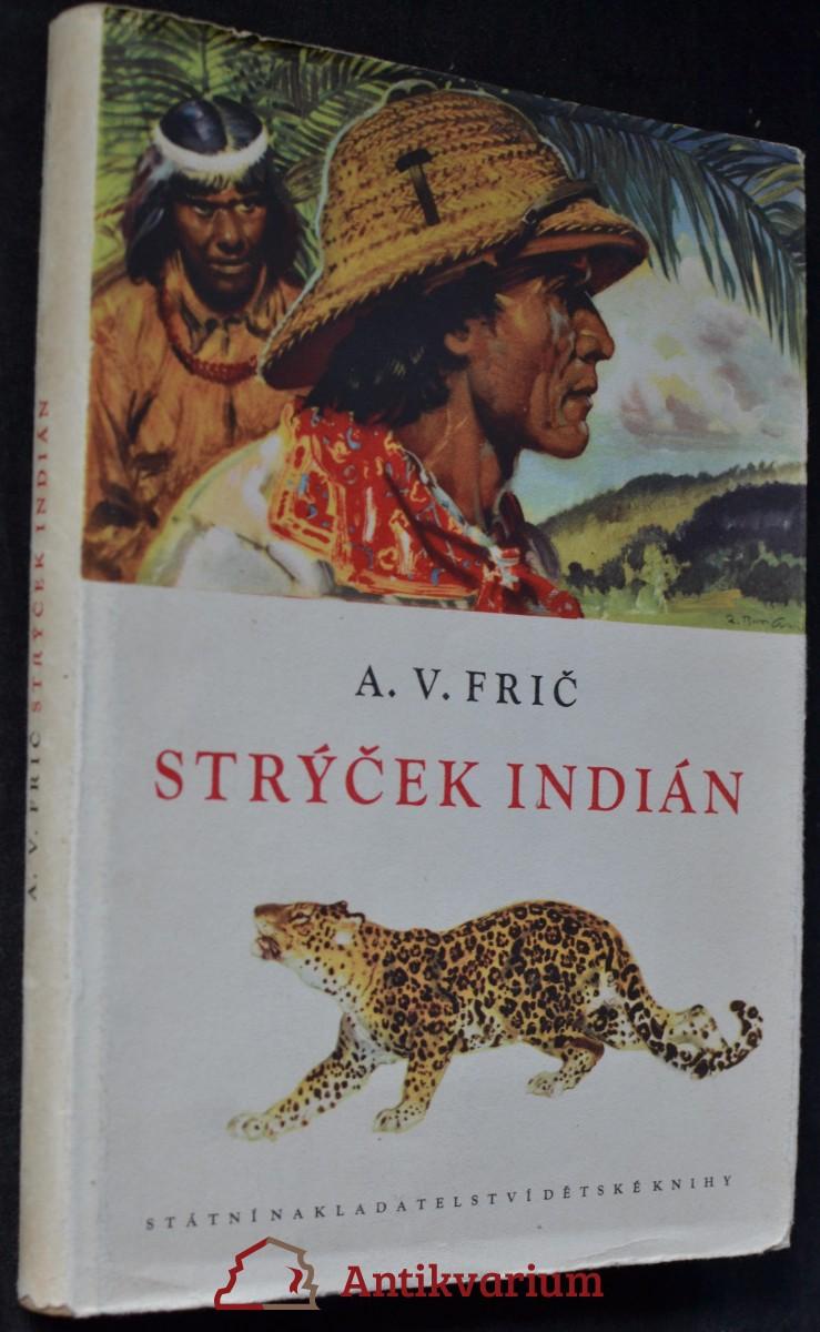 Strýček Indián : dobrodružství lovce v Gran Čaku