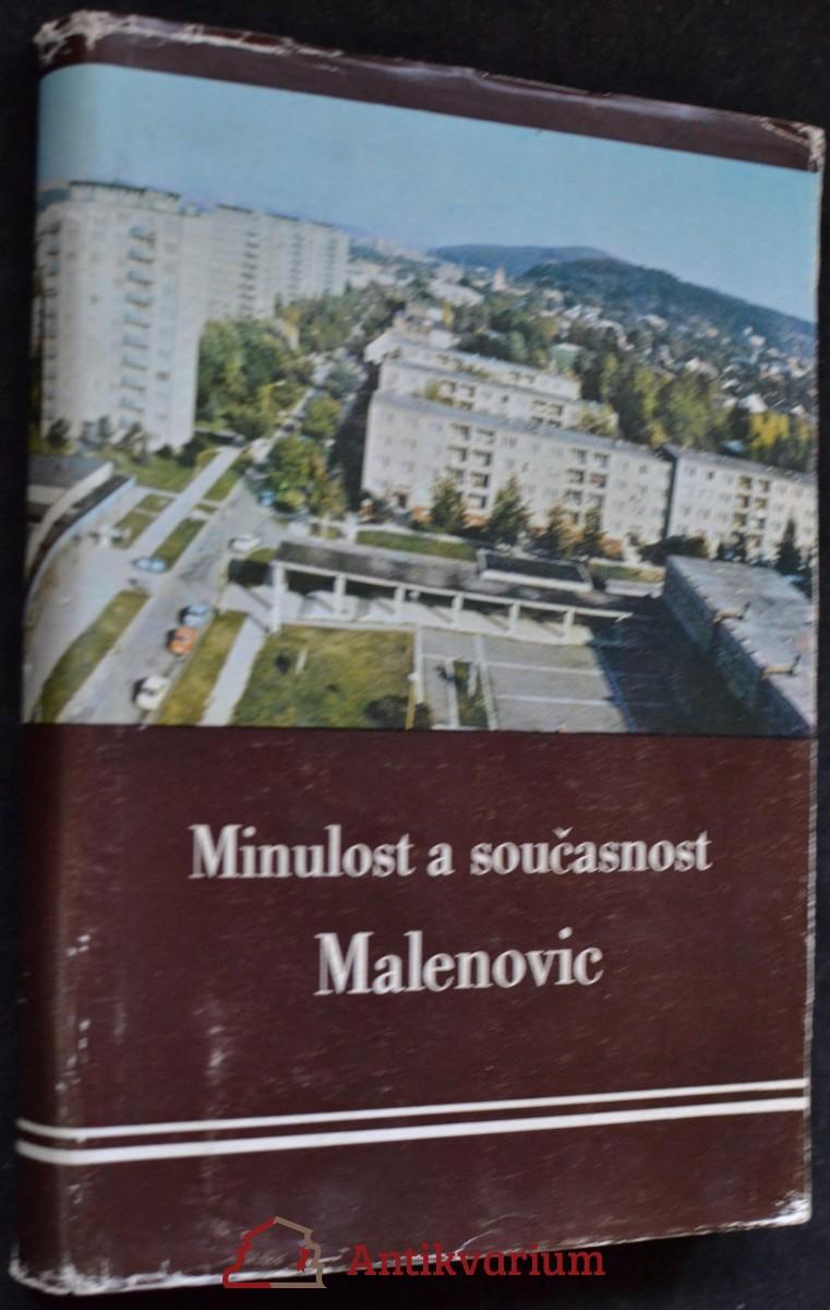 Minulost a současnost Malenovic