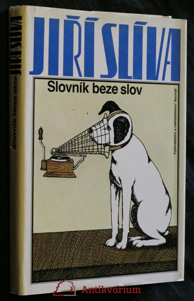 Slovník beze slov