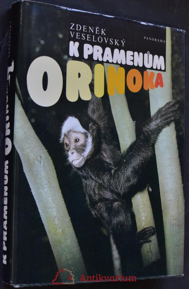K pramenům Orinoka