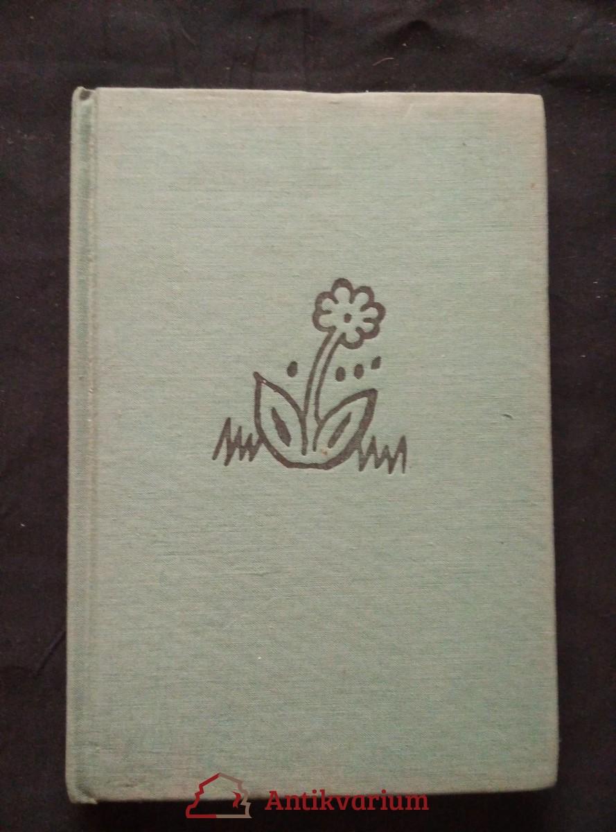 Sto veselých kreseb (A6, Ocpl, 116 s.)
