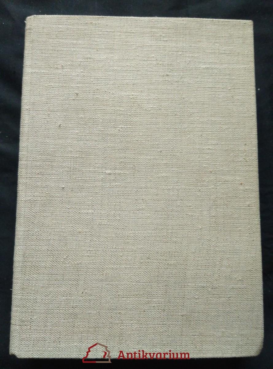 Nebojácná Ho-Ming (A4, Ocpl, 212 s., il. K. Wiese)