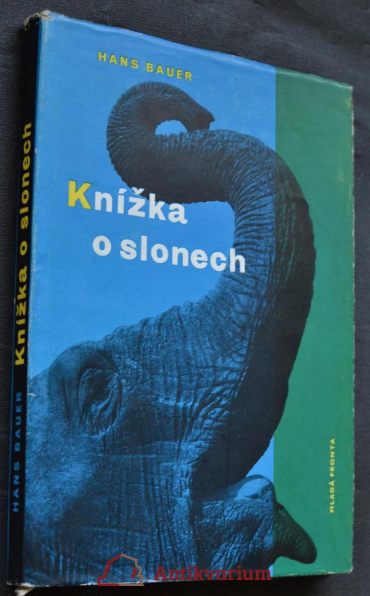Knížka o slonech