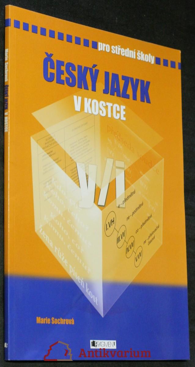 Český jazyk v kostce : pro střední školy