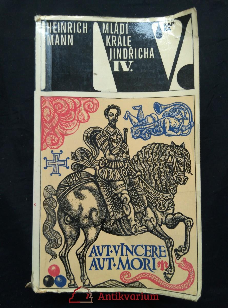 Mládí krále Jindřicha IV. (lam., 608 s.)