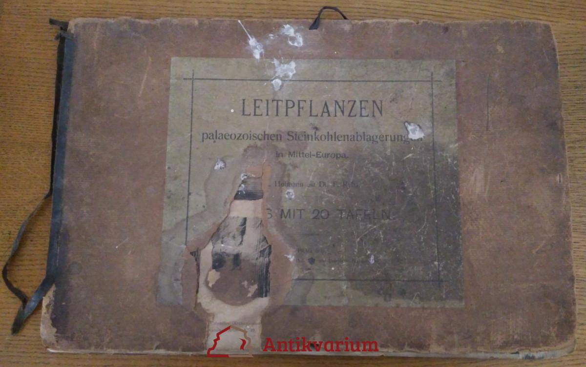 antikvární kniha Leitpflanzen der palaeozoischen Steinkohlenablagerungen in Mittel-Europa, 1899