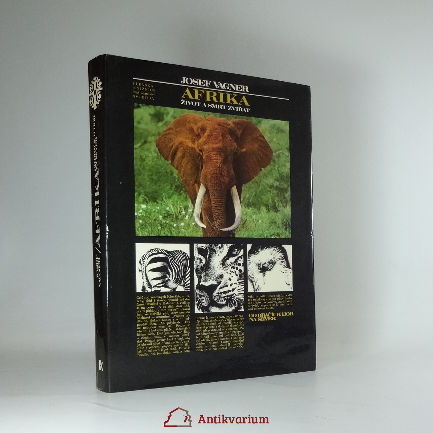 antikvární kniha Afrika : život a smrt zvířat., 1979