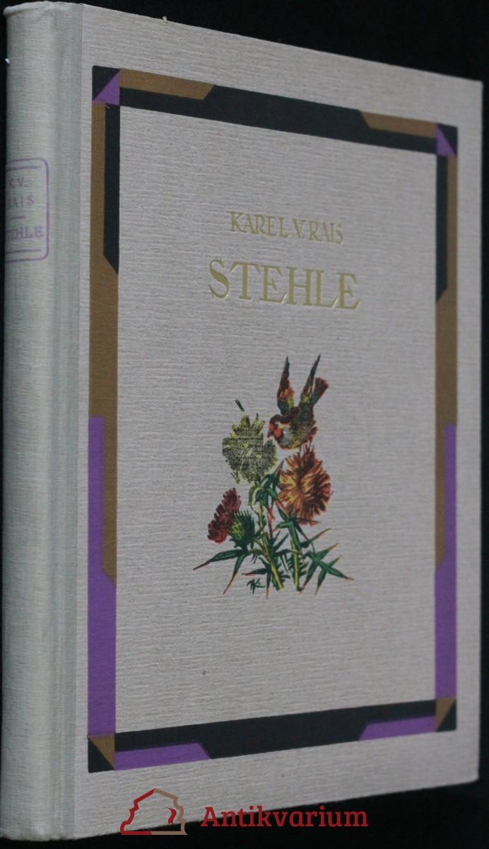 antikvární kniha Stehle : podhorský obraz, 1939
