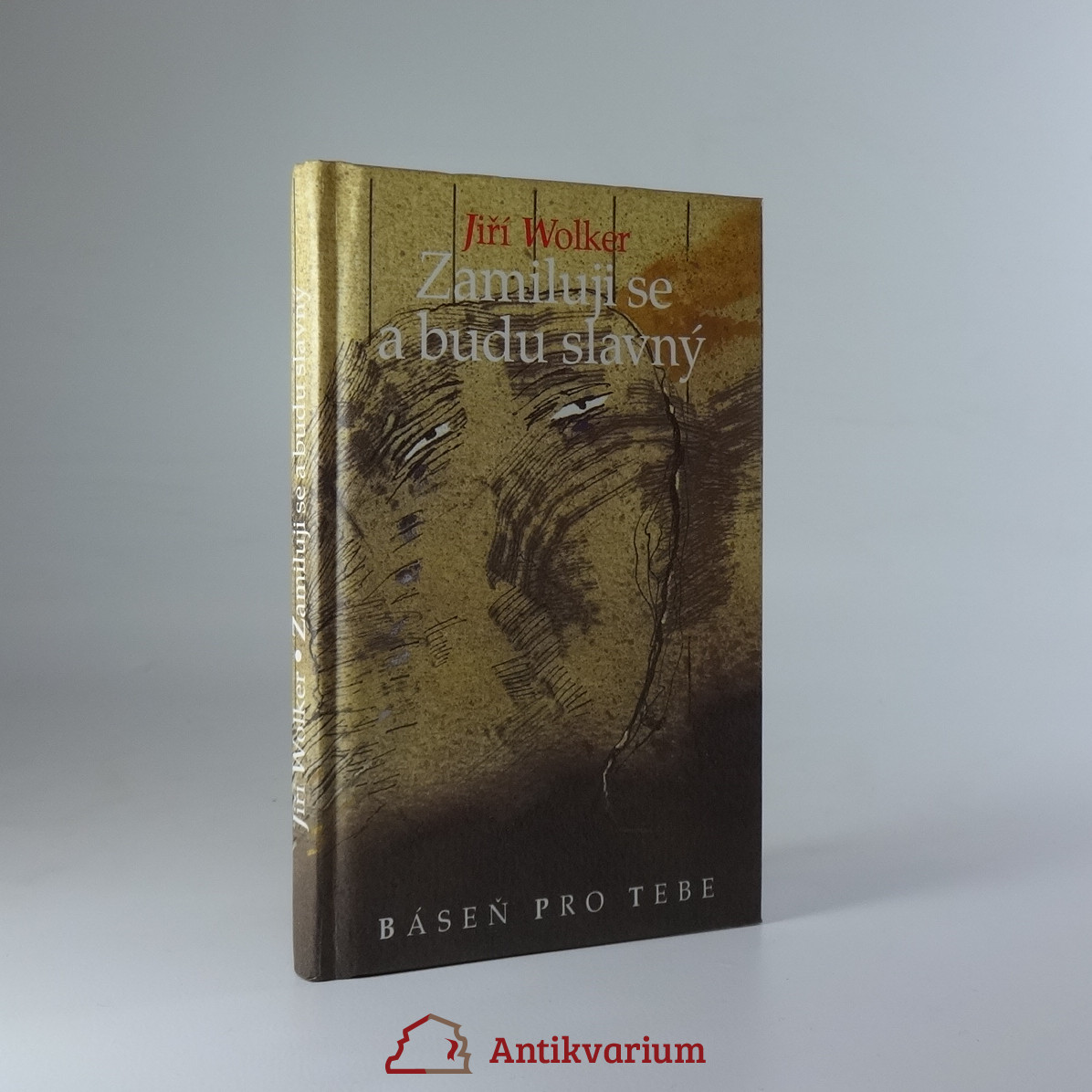antikvární kniha Zamiluji se a budu slavný, 1997
