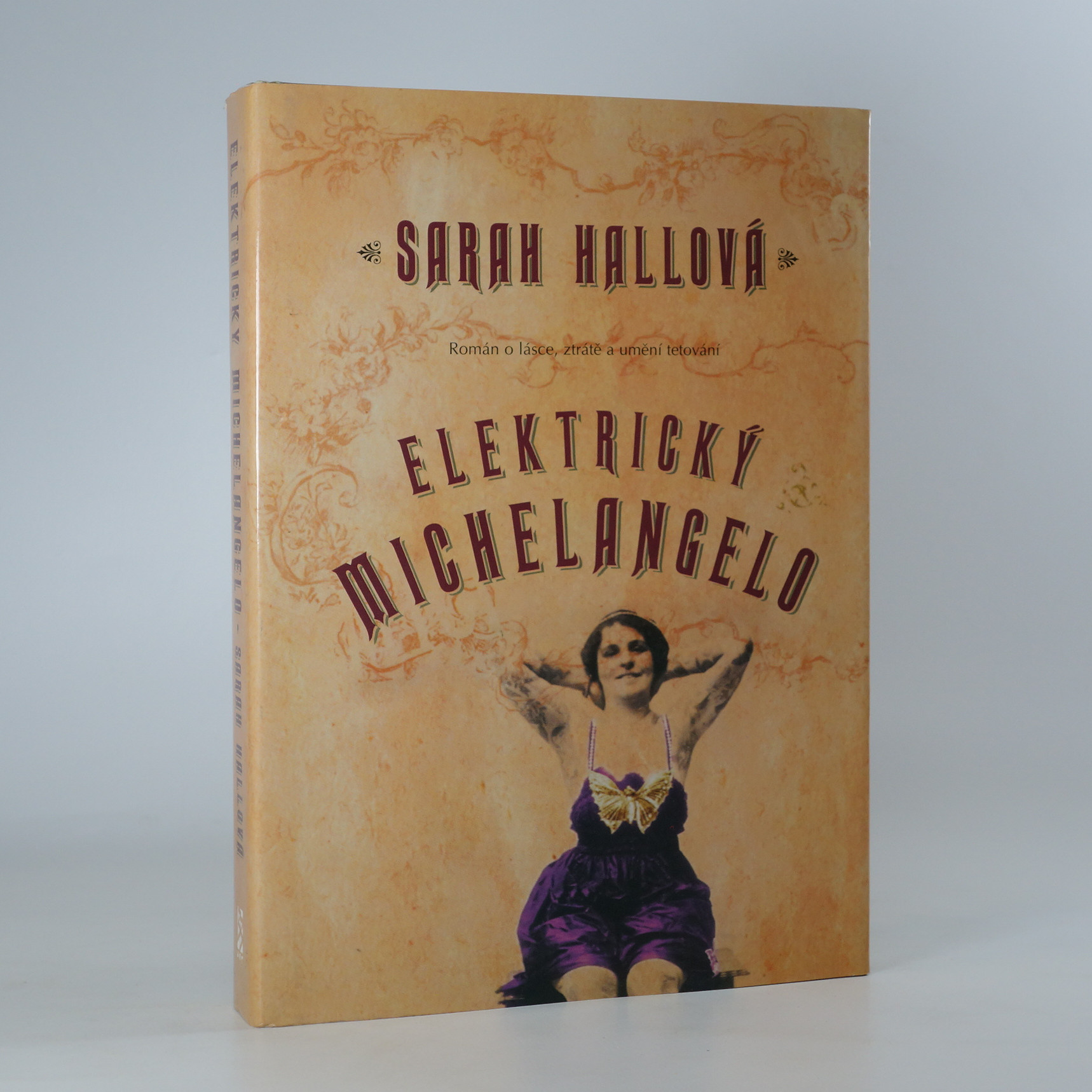 antikvární kniha Elektrický Michelangelo, 2005