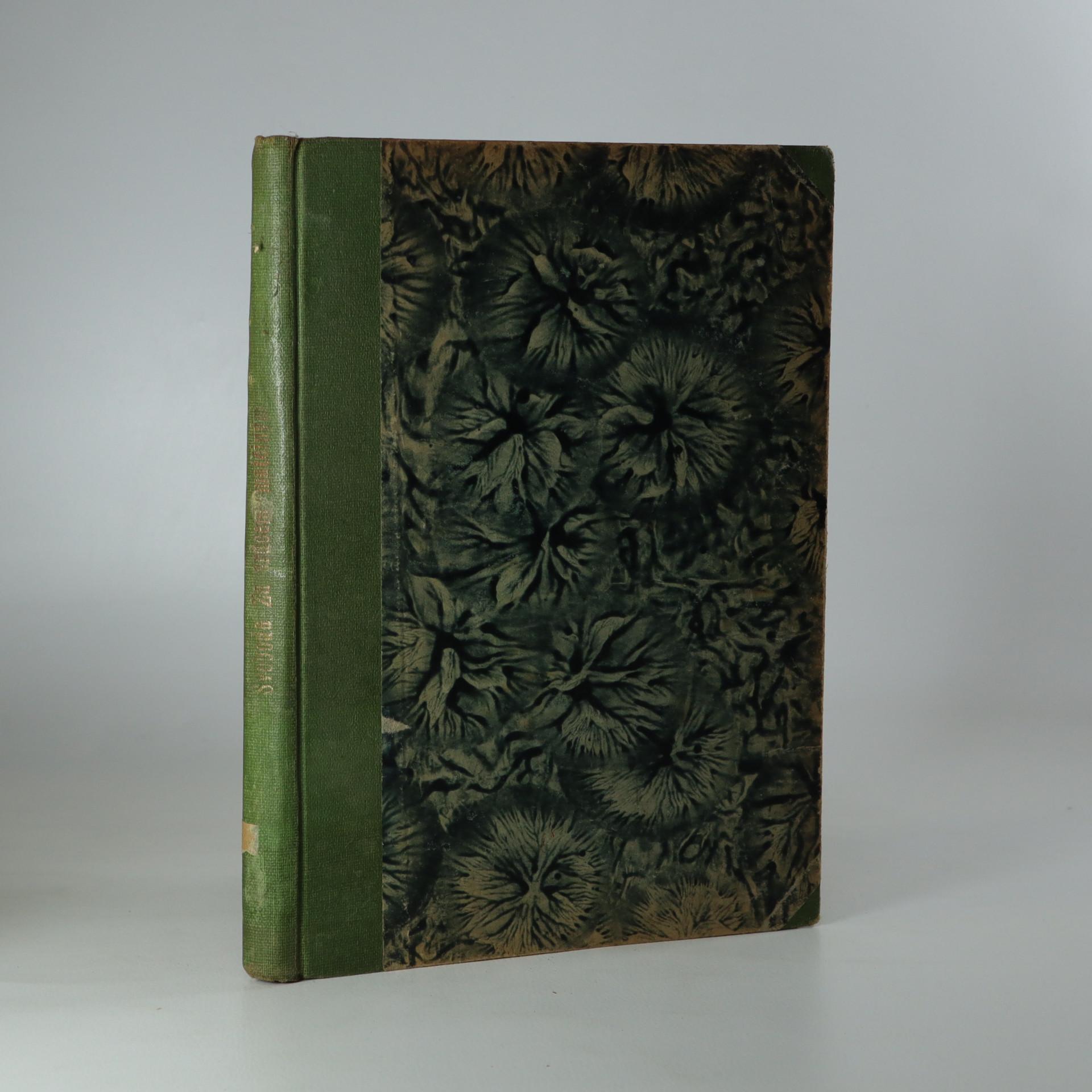 antikvární kniha Za srdcem matčiným (Je cítit zatuchlinou), 1922