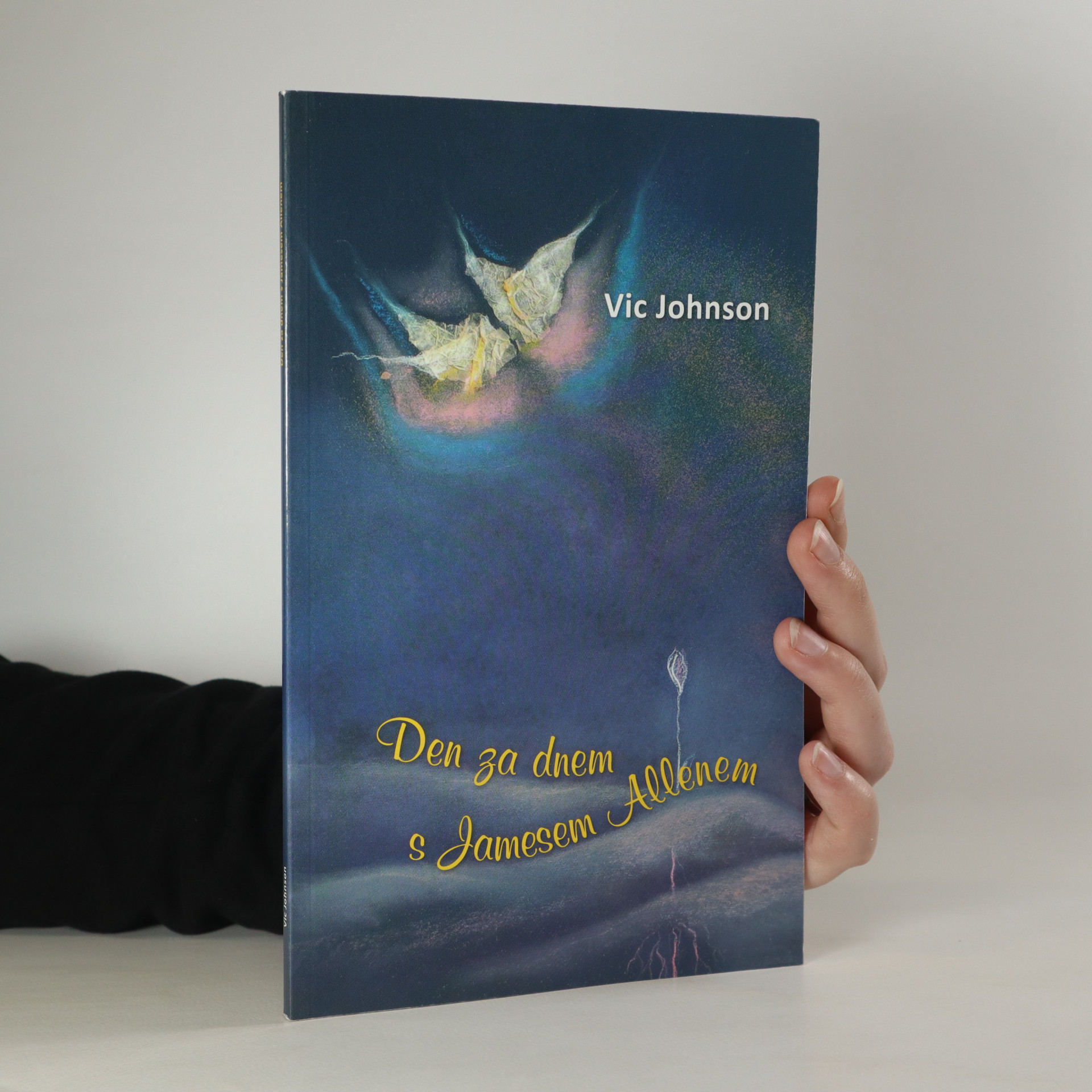 antikvární kniha Den za dnem s Jamesem Allenem, 2010