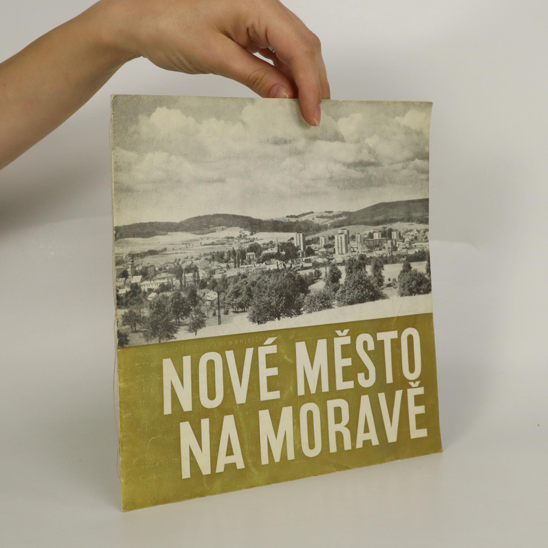 antikvární kniha Nové Město na Moravě, 1969