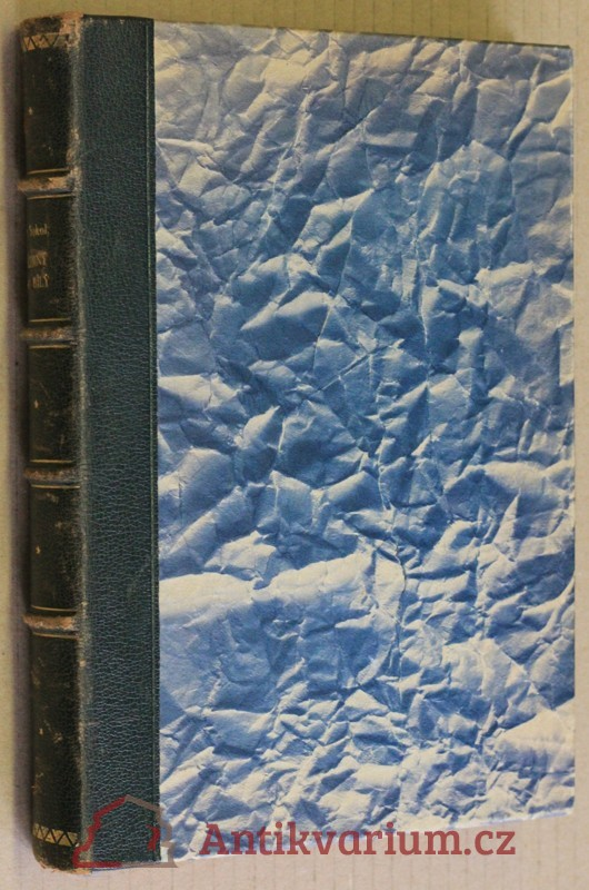 antikvární kniha Černý a bílý : román, 1926