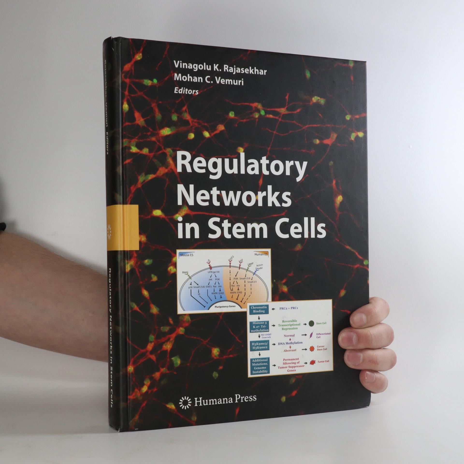 antikvární kniha Regulatory Networks in Stem Cells, neuveden