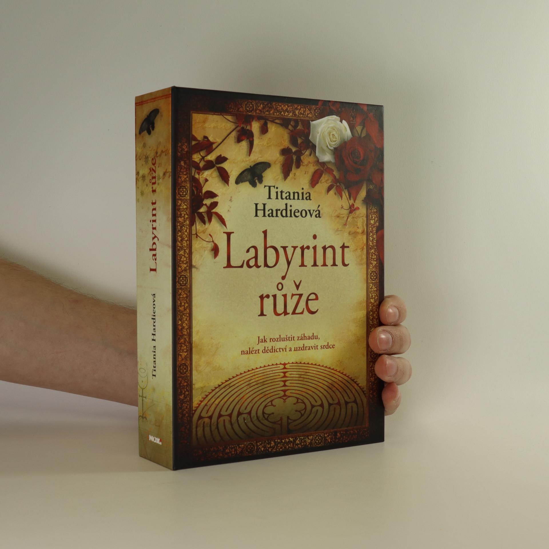 antikvární kniha Labyrint růže, 2008