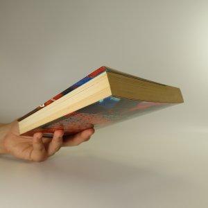 antikvární kniha Průvodce usoužených puberťáků láskou. Podle patnáctky Letty Chubbové, 2005